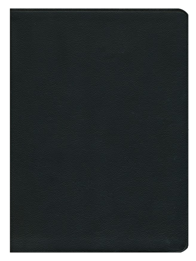 NRSV New Oxford Annotated Bible with Apocrypha, 4th Edition, Black, Genuine Leather, Thumb-Indexed