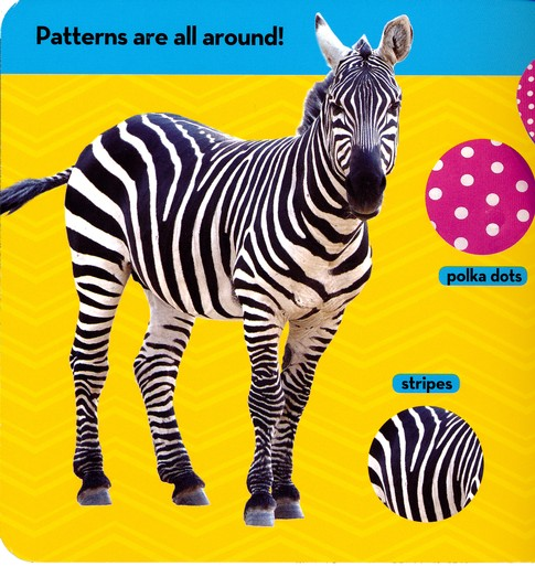 Patterns! National Geographic Kids Look and Learn