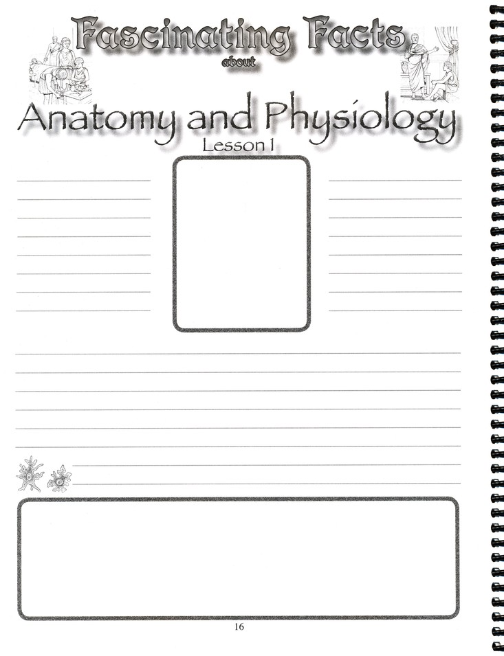 Notebooking Journal for Human Anatomy and Physiology