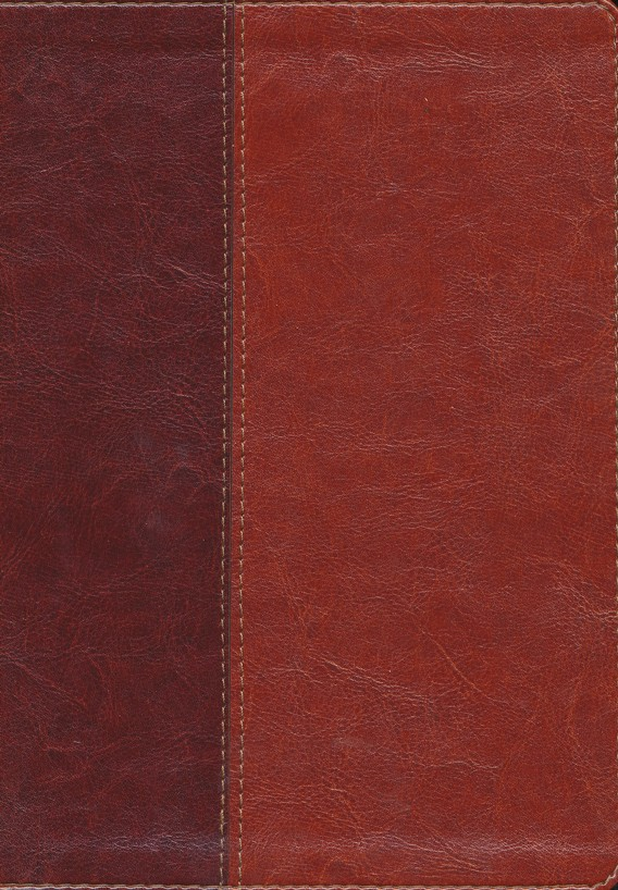 NLT Slimline Reference Bible, Large Print TuTone Leatherlike  Brown/Tan, Thumb-Indexed
