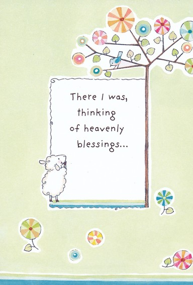 Really Woolly Thinking of You Cards, Box of 12