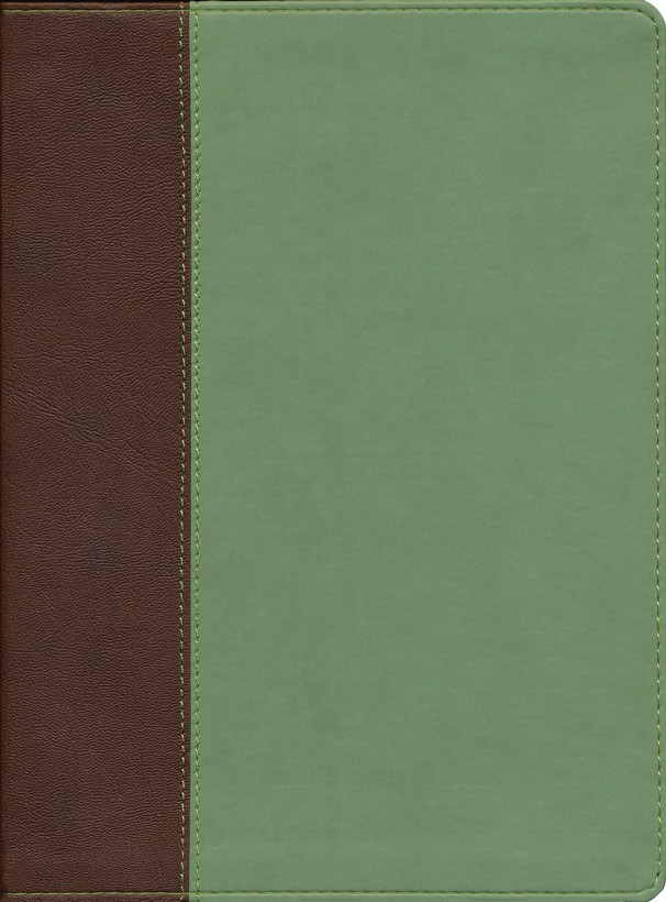 HCSB Life Essentials Study Bible, Simulated Leather  Thumb Indexed Brown/Green Duotone