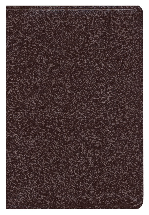 HCSB UltraThin Reference Bible, Large Print Bonded Leather, Burgundy