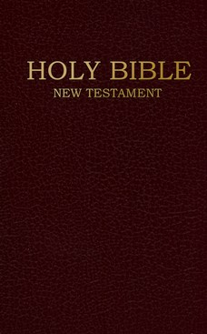 NIV Shirt Pocket New Testament, Imitation Leather,      Burgundy