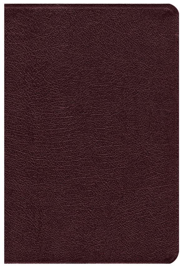 NIV Life Application Study Bible, Personal Size, Bonded Leather, Burgundy