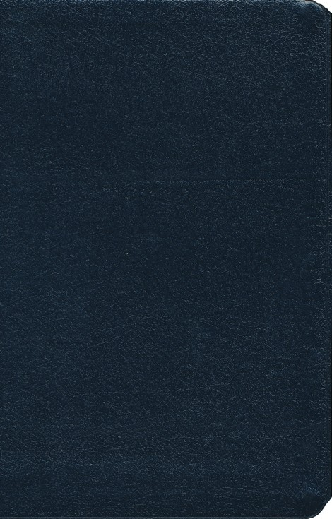 NIV Thinline Bible, Navy, Thumb-Indexed