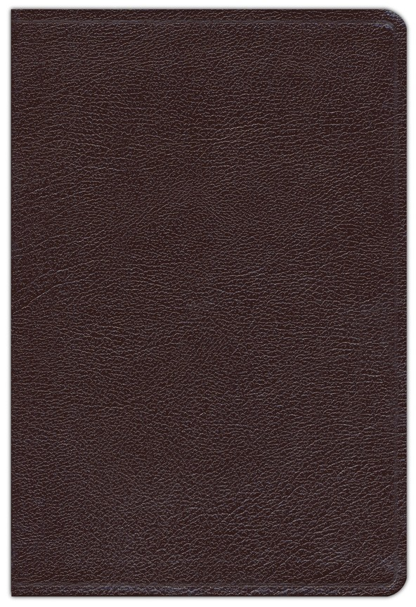 NIV Thinline Large-Print Bible, burgundy