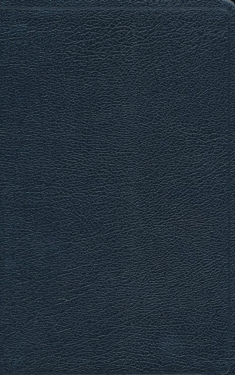 NIV Thinline Reference Bible, Navy