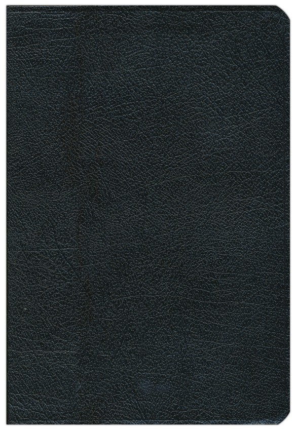 NIV and The Message Side-by-Side Bible: Two Bible Versions Together for Study and Comparison, Bonded Leather, Black