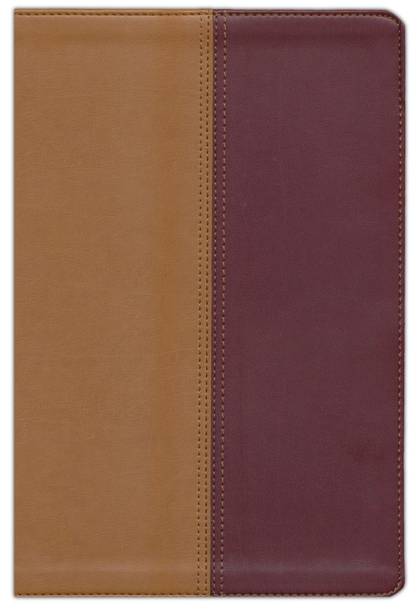 NIV and KJV Side-by-Side Bible , Imitation Leather, Tan & Black Cherry