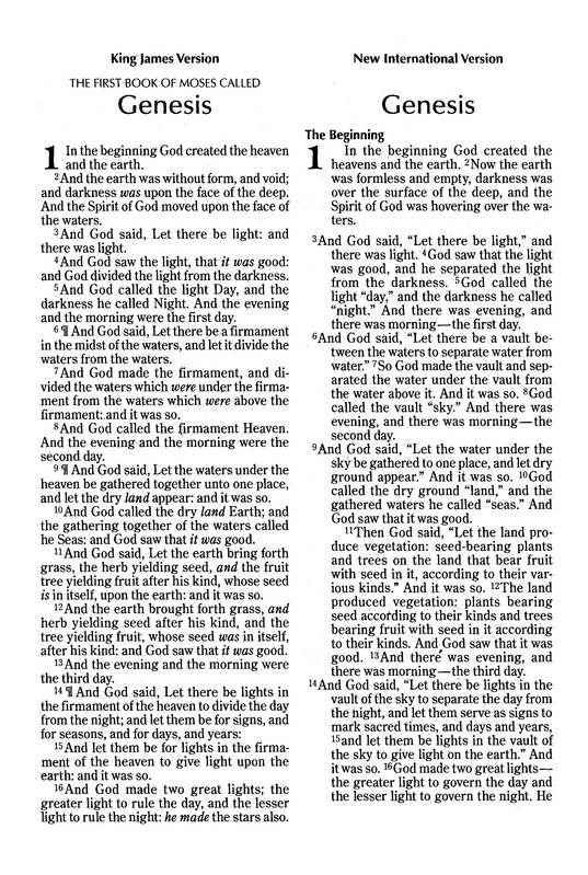 NIV and KJV Side-by-Side Bible, Large Print,  Italian Duo-Tone, Orchid/Chocolate