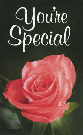 You're Special (KJV), Pack of 25 Tracts