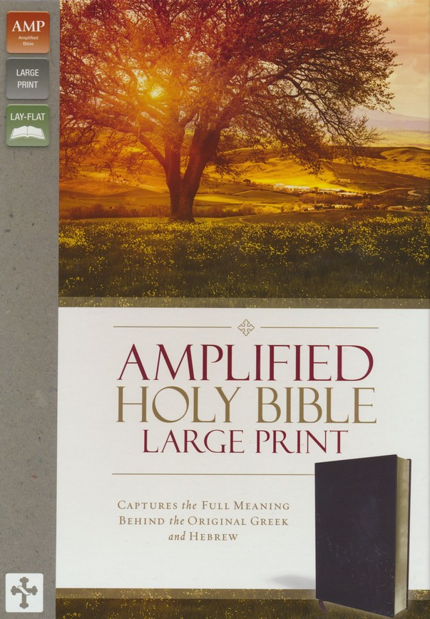 Amplified Large-Print Bible--bonded leather, burgundy