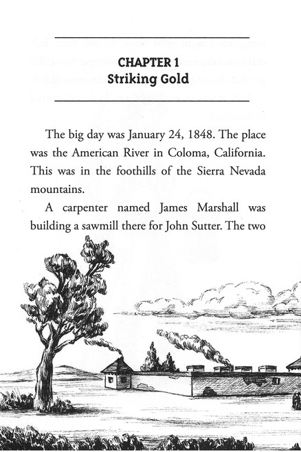 What Was The Gold Rush Joan Holub Illustrated By Tim Tomkinson