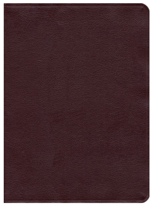 Ryrie NAS Study Bible Bonded Leather Burgundy, Red Letter