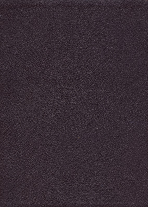 Ryrie NAS Study Bible Genuine Leather Burgundy, Red Letter