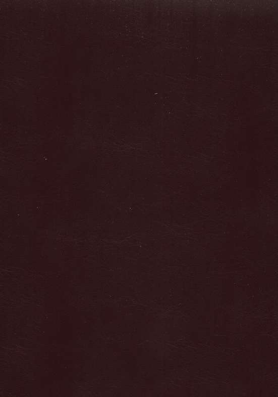 NAS Giant Print Reference Bible, Imitation leather, Burgundy
