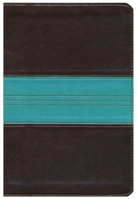 Soft leather-look, Dark Brown / Teal Band