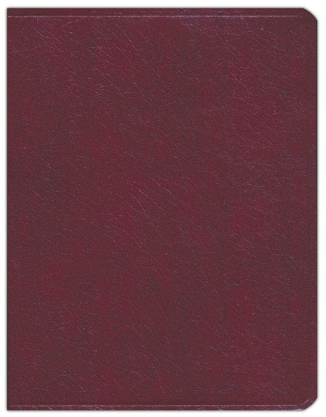 Key Word Study Bible NASB (2008 new edition), Bonded Burgundy Leather