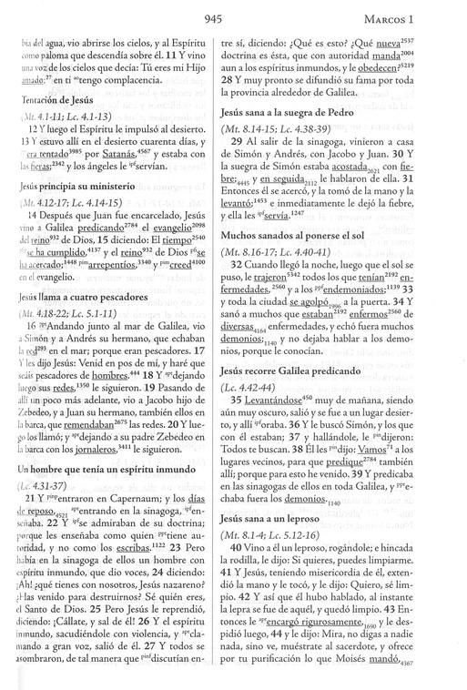 Biblia de Estudio Palabras Claves Hebreo-Griego, Piel Esp  Negra (RVR 1960  Hebrew-Greek Keyword Study Bible, Bon Leather, Bk )