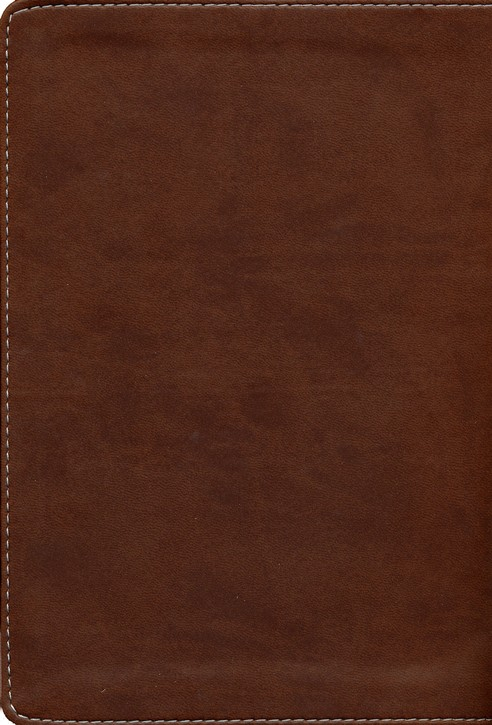 KJV Hand Size Giant Print Reference Bible, Brown and Tan Simulated Leather