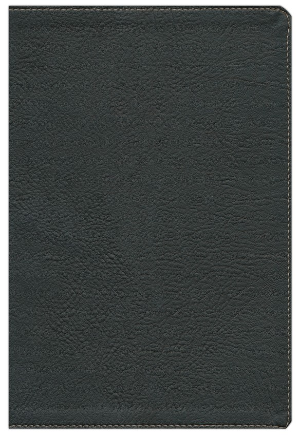 HCSB Large Print UltraThin Reference Bible, Black Simulated Leather