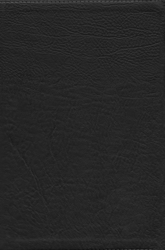 HCSB UltraThin Reference Bible, Black Mantova imitation leather