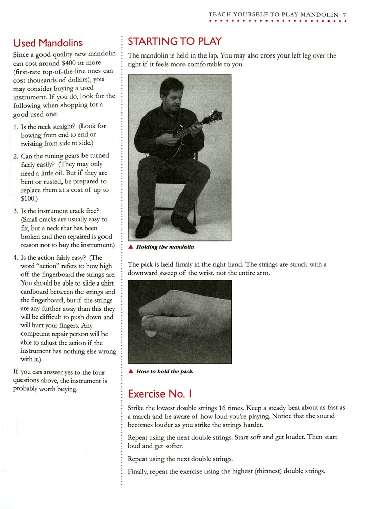 Teach Yourself To Play Mandolin Fox Sheet Music & Song Books
