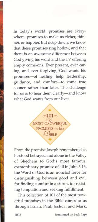101 most powerful promises in the bible rabey lois ford marcia rabey steven