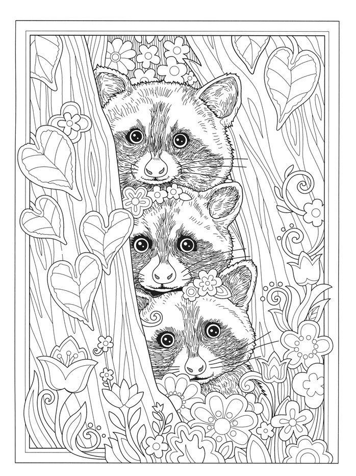 Wondrous Wildlife Coloring Book: Marjorie Sarnat: 9780486845425 -  Christianbook.com
