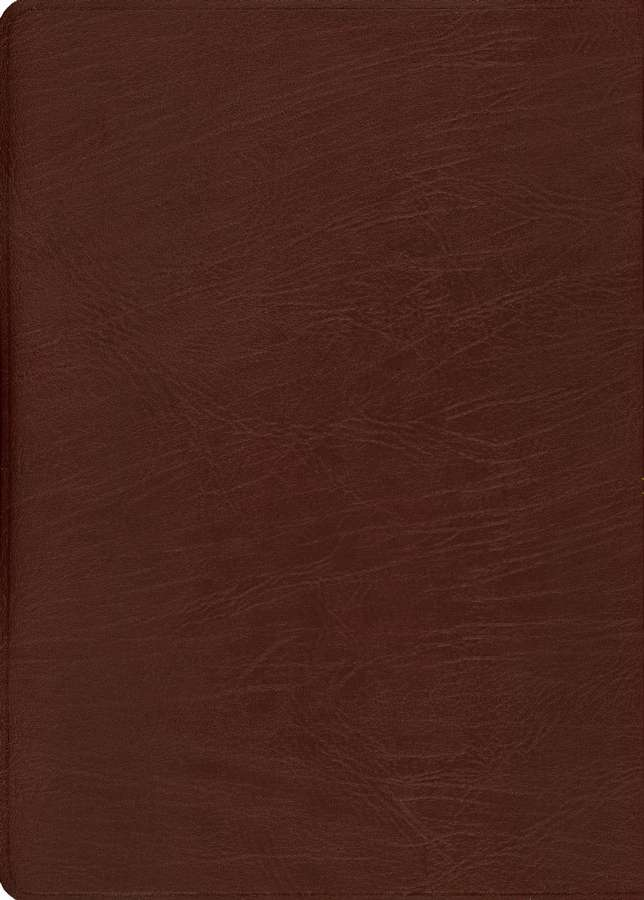 KJV Thompson Chain-Reference Bible, Large Print, Burgundy  Genuine Leather, Capri Grain, Thumb Indexed