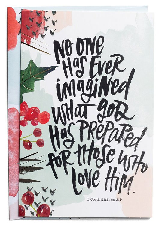 No One Has Ever Imagined What God Has Prepared Christmas Cards Box Of 18 Katygirl Christianbook Com