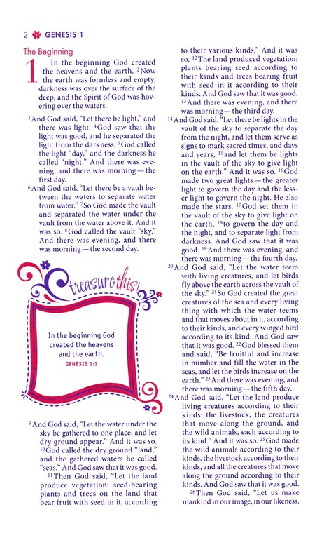 NIV Faithgirlz! Bible, Revised Edition, Italian Duo-Tone, Green/Petal Purple