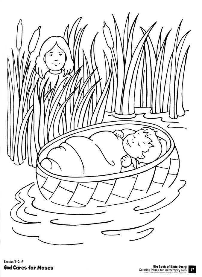 Big Book Of Bible Story Coloring Pages For Elementary Kids: 9780830772339 -  Christianbook.com