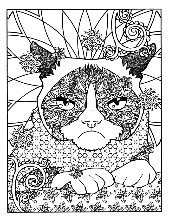 Grumpy Cat Hates Coloring Adult Coloring Book Diego Pereira 9780486808130 Christianbook Com