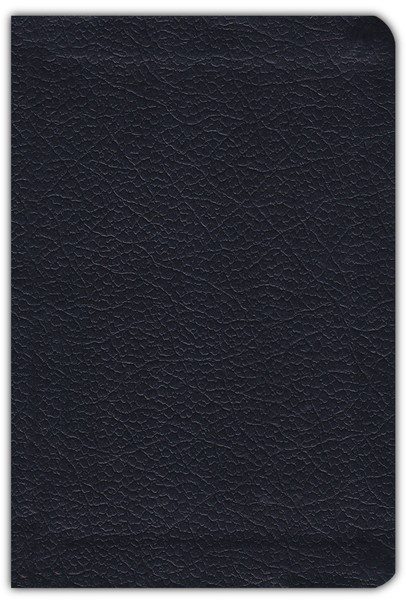 NRSV Go-Anywhere Compact Thinline Bible with Apocrypha