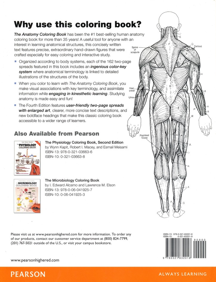 - The Anatomy Coloring Book (4th Edition): Wynn Kapit, Lawrence M. Elson:  9780321832016 - Christianbook.com