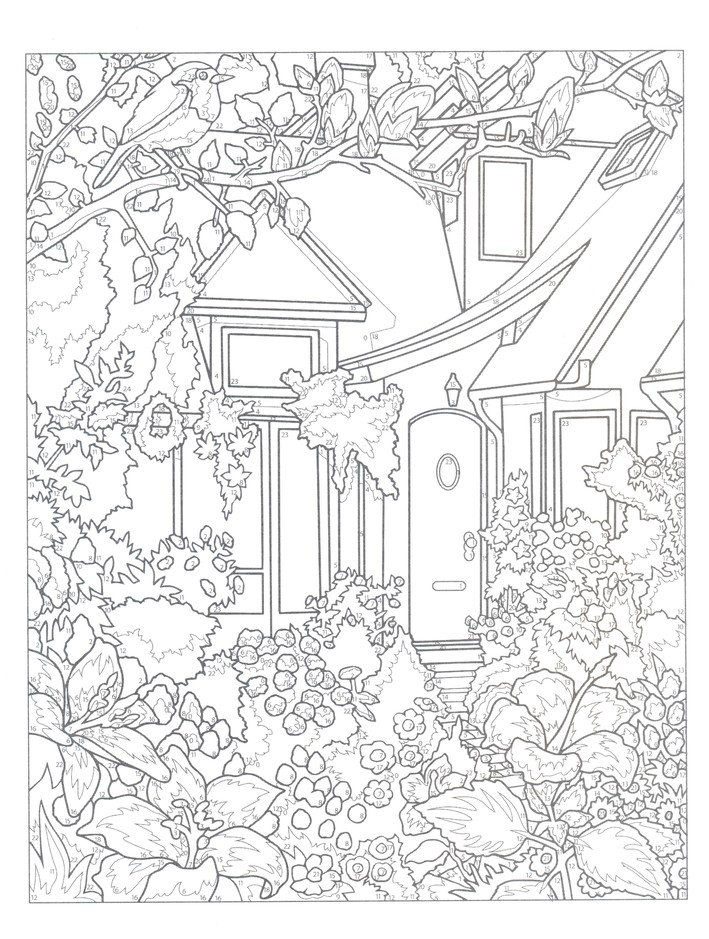 Glorious Gardens Color By Number Coloring Book: George Toufexis:  9780486836690 - Christianbook.com