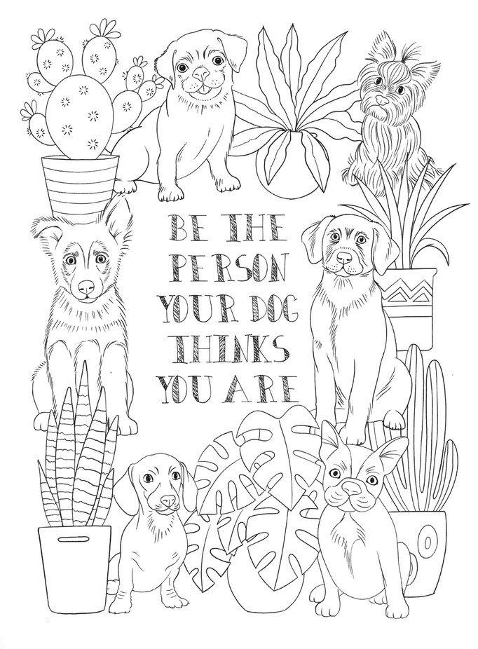 Creative Haven Playful Pet Talk Coloring Book: Jo Taylor: 9780486842554 -  Christianbook.com