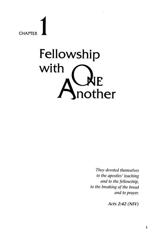 One Anothering, vol.1: Biblical Building Blocks for Small Groups