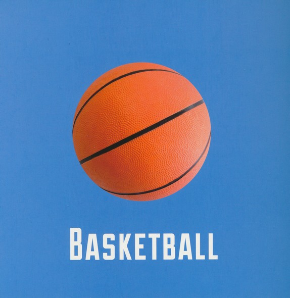 My First Basketball Book