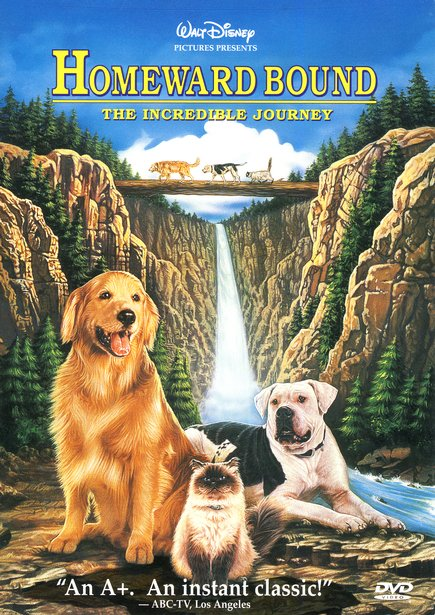 Homeward Bound: The Incredible Journey, DVD