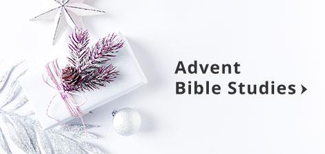 Best Christmas Devotional Ever.Advent 2019 Christianbook Com