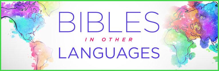 Other Languages Bibles - Christianbook com