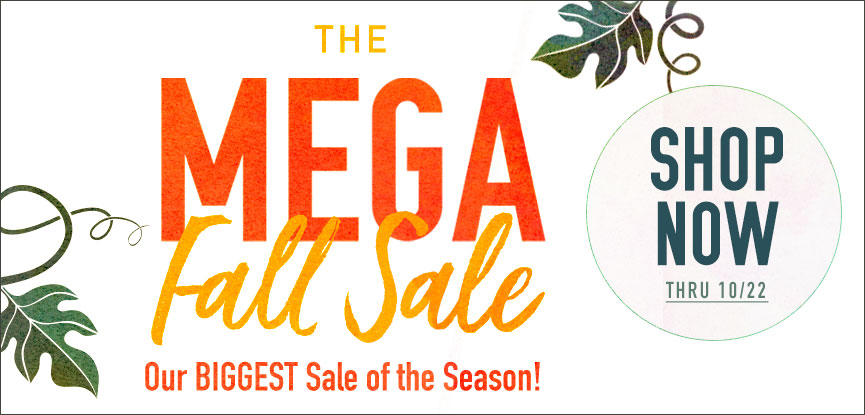 The Mega Fall Sale