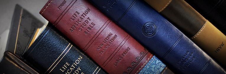 niv kjv nasb amplified classic comparative parallel bible bonded leather burgundy niv and kjv and nasb and amplified