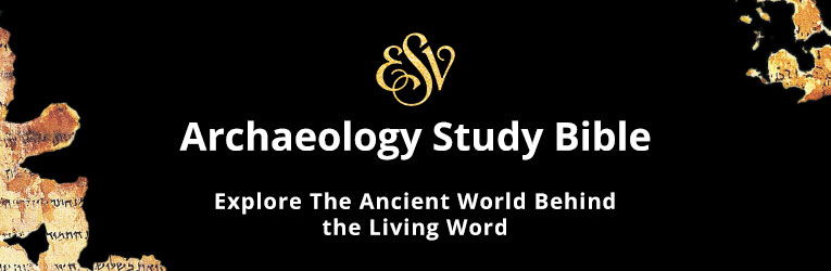 Study bibles christianbook niv theology sb esv sb esv archaeology fandeluxe Gallery