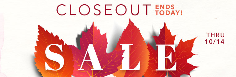 Small Quantity Closeout Sale --Last Day!