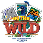 Into The Wild VBS Logo
