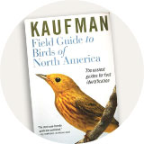 Birdwatching Books